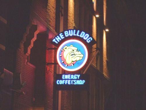 coffeshop amsterdam Bulldog insegna