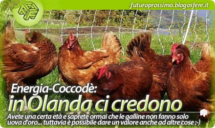 Una nuova forma di energia: le galline olandesi