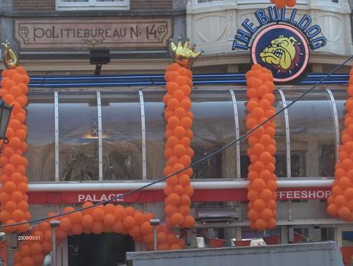 Amsterdam, il giorno della Regina, Aprile 09, il Bulldog in arancione nel dettaglio